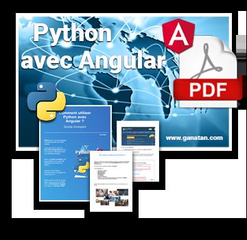 Python avec Angular